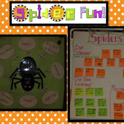 Spider Unit Fun!