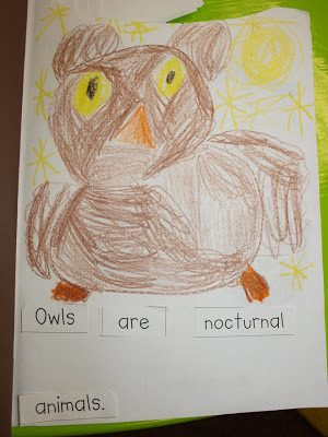 Owl book pictures and a cool video!