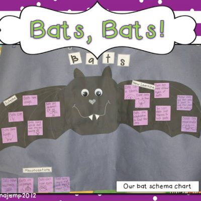 Bats, Bats, Bats!  and what's coming up….