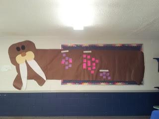 How big is a walrus?