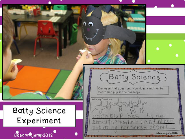 Batty Science Experiment