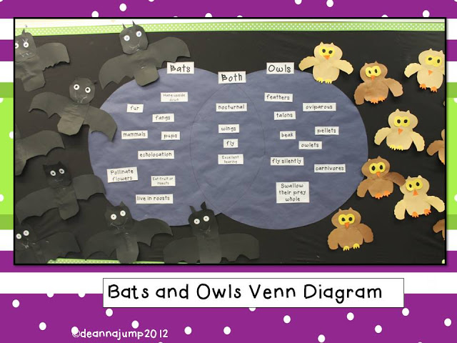 Bats and Owls Venn Diagram