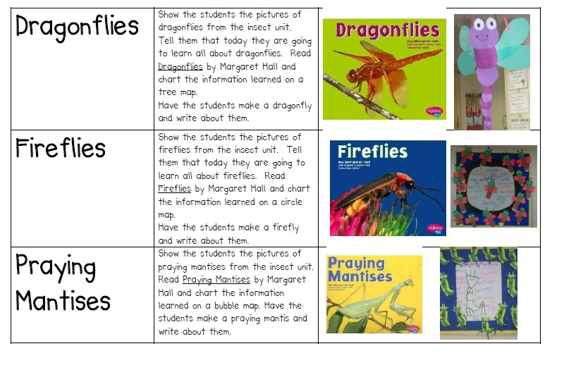 Insect Learning Fun, Freebies and a Sale!