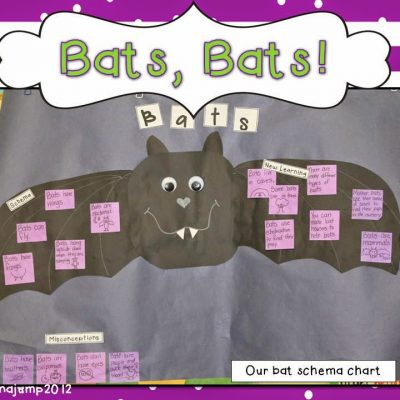 Batty Over Bats!