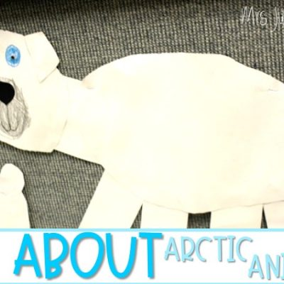 Arctic Animals: Polar Bears and Walruses