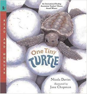 Teaching with Informational Texts: Close Reading Lessons for One Tiny Turtle