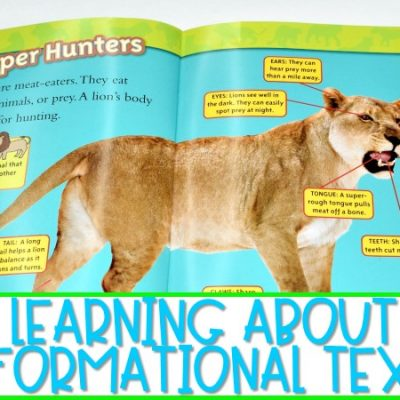 Learning About Informational Texts (FREE File Included)
