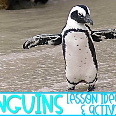 Penguin Activities and Videos for Kindergarten and First Grade