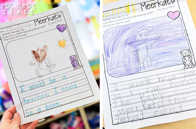 Your students will love learning about African animals with these nonfiction book activities. Engaging reading lessons about lions, giraffes, elephants, and meerkats. Great for a zoo unit!
